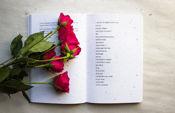 9 Poems For When You're Feeling Lost